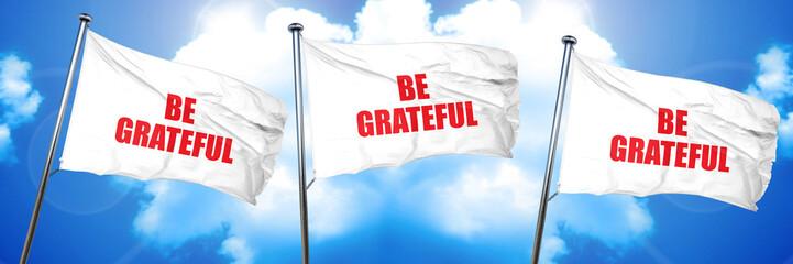 be grateful, 3D rendering, triple flags
