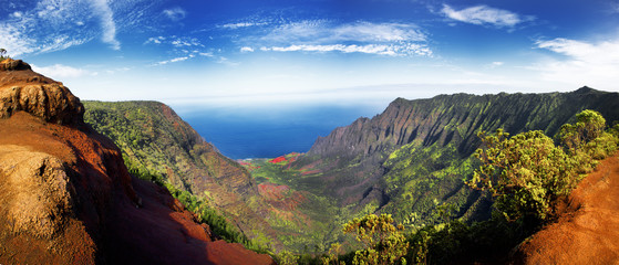 Panoramic view of  lush green foliage in Weimea Canyon and NaPali coast Kauai, Hawaii