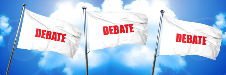 debate, 3D rendering, triple flags
