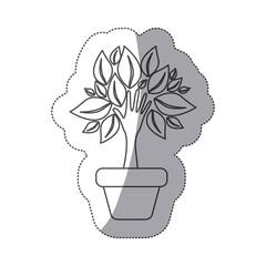 silhouette tree with leaves inside flower pot, vector illustraction design