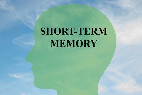 Short-Term Memory concept