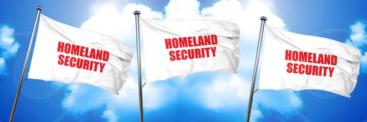 homeland security, 3D rendering, triple flags