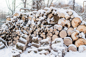 Wall of stacked logs and branches. Firewood in the snow