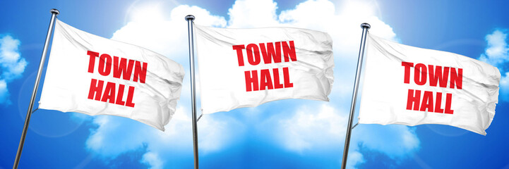 town hall, 3D rendering, triple flags