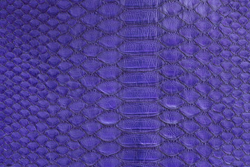 Genuine python snakeskin leather, snake skin, texture background.
