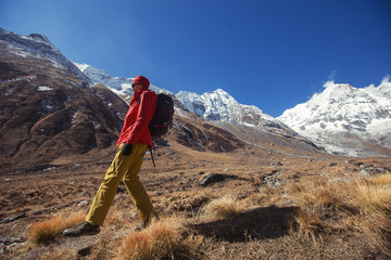 Hiker trekking in Himalaya mountains. Sport and active life