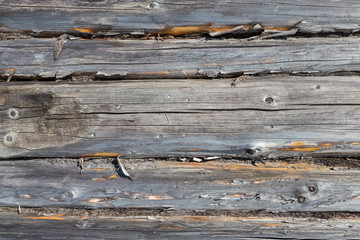 The texture of natural wood