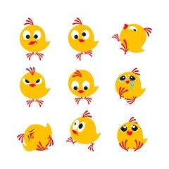 funny chickens, package