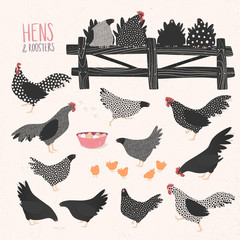 Vector set of various hens and roosters