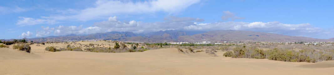 View on the dunes of Maspalomas on the Canary Island Gran Canaria, Spain.