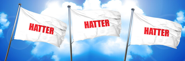 hatter, 3D rendering, triple flags
