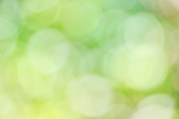 Blur Sunlight for Green Background