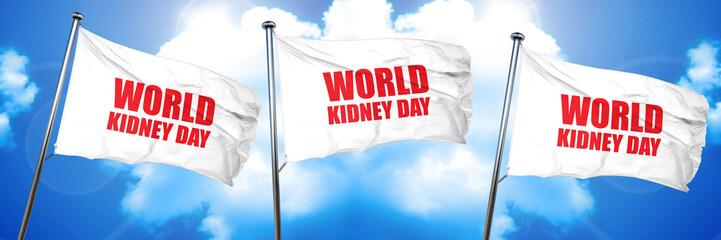world kidney day, 3D rendering, triple flags