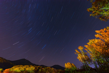 Star of the night sky and Autumn leaves,in Towada-Hachimantai National Park,Aomori,Japan