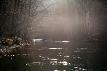 Fluss im Abendlicht