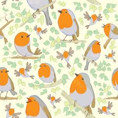 Robin pattern. Cartoon birds. Hand drawn. Vector illustration