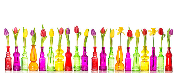 Tulips daffodil flowers glass bottles spring decoration