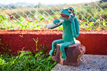 Smoking Frog