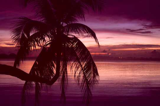 red tropical sunset