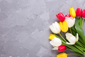 Yellow, pink  and white tulips flowers on grey textured concrete background.