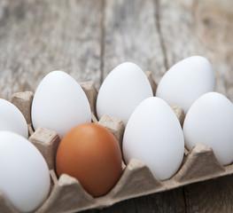 œufs dans un carton douzaine