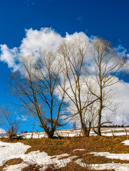 last days of winter in rural landscape