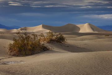 Sand dunes in the Nevada desert