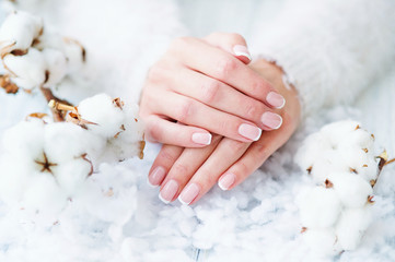 Foto auf Leinwand Maniküre Woman hands with beautiful French manicure holding delicate white cotton flower