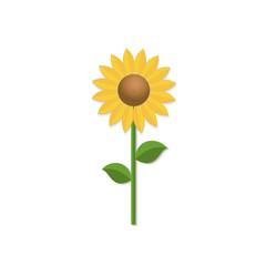 Sunflower isolated on white background. Cartoon vector illustration.