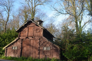 Old rustic wooden barn in Flemish forest