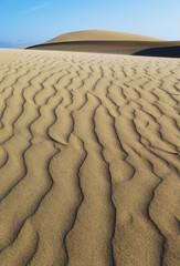 Oceano Dunes Natural Preserve, California