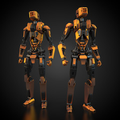 zwei humanoide Roboter