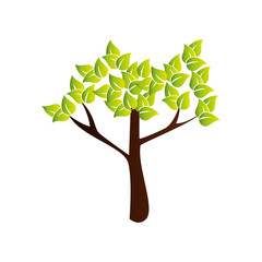 tree plant nature icon vector illustration design