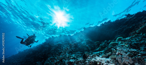 Wall mural Rays of sunlight shining into sea, underwater view