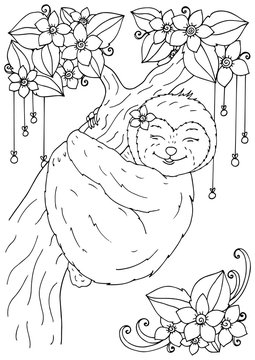 Vector illustration of handmade work, zentangl the sloth on a tree. Doodle drawing. Coloring page Anti stress for adults. Black and white.