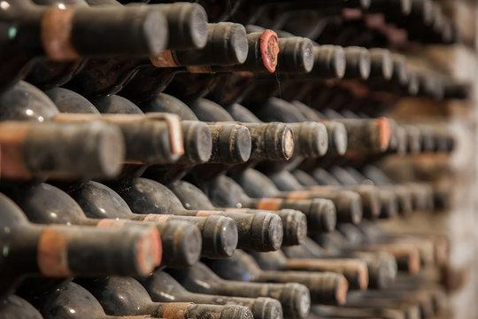 Old bottles of wine in old cellar