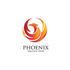best luxury phoenix consulting element logo  vector concept