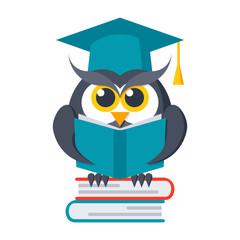 Wisdom concept, owl with books in graduation cap