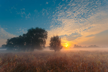 Beautiful foggy sunrise landscape. Dreamy morning field..