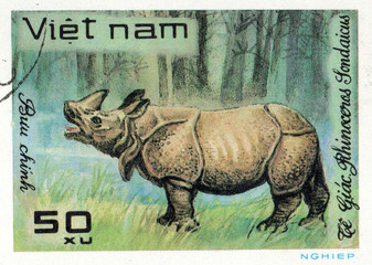 VIETNAM - CIRCA 2017: A Stamp printed in Vietnam shows rhinoceros Rhinoceros sondaicus, series Animals, circa 1981