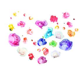 흰배경 각양각색 여러 종의 아름다운 진짜 장미로 이루어진 하트