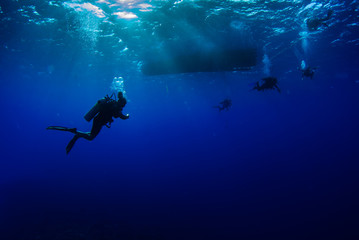 Scuba divers hang out underneath a boat are lit by the sun's light beams that break through the clear blue water.  The wavey surface can be seen above the people and bubbles are released Wall mural