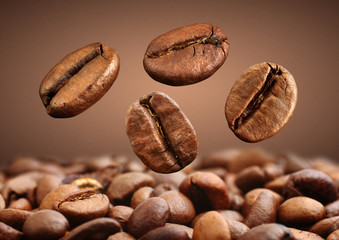 Closeup falling coffee bean on brown background