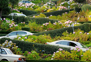 Fotobehang San Francisco San Francisco, Lombard Street, one of the most famous landmark and the crookedest street in the world.