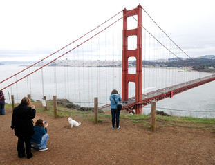 People take pictures dog on the background Golden Gate Bridge in San Francisco, California, USA