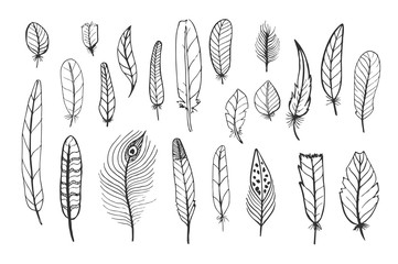 A set of cute feathers, black hand drawn doodles on a white background