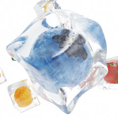 Fruits frozen in ice cube, ice cube in front view, single ice cube isolated on white background. 3d rendering