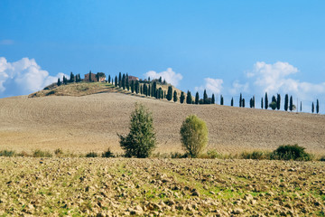 Val d'orcia landscape, Tuscany, Italy