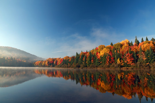 Autumn forest reflected in water. Colorful autumn morning in the mountains. Colourful autumn morning in mountain lake. Colorful autumn landscape. Autumn in Canada.