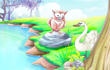 Swan and Owl Story